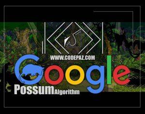 الگوریتم موش کور گوگل چگونه عمل میکند و چطور رنک خوبی را از ان بگیریم